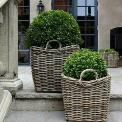 Outdoor Living Trend – Plants In A Basket