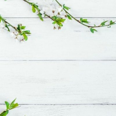 What You Need To Know About Espalier Fruit Trees