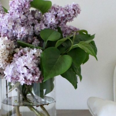 Fresh Flowers From The Garden – Lilacs