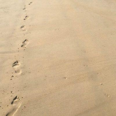 On The Beach Noosa Resort